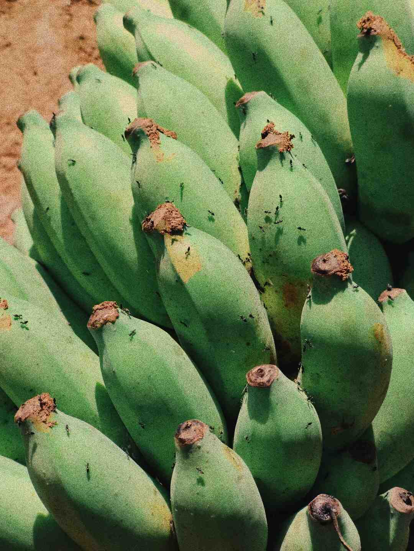 Comment éplucher une banane plantain