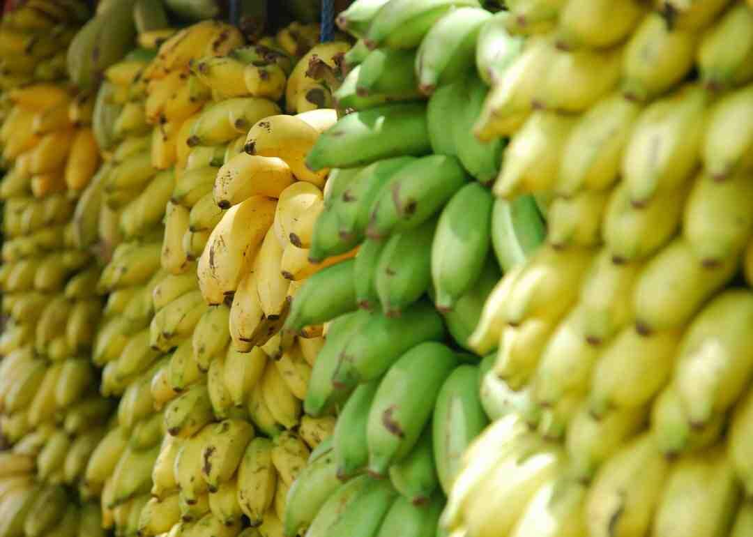 Quel est le goût de la banane plantain ?