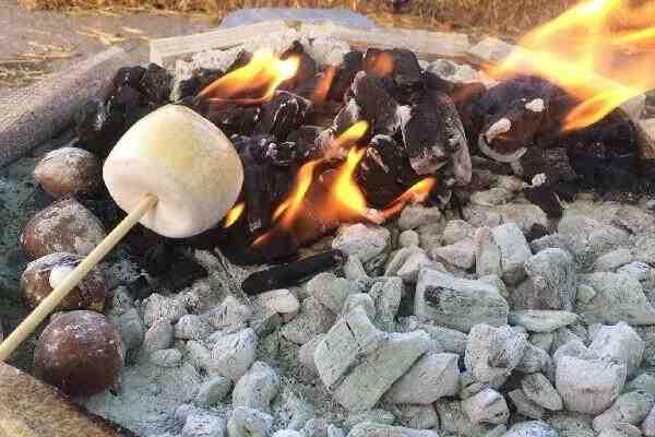 Comment faire griller des guimauves